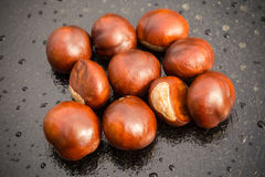 Fresh Chestnuts Macro Stock Photo