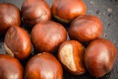 Fresh Chestnuts Macro Royalty Free Stock Photos