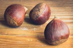 Fresh chestnuts Stock Image