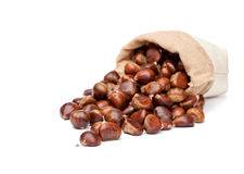 Fresh chestnuts in sack bag on white background Royalty Free Stock Images