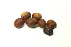 Fresh chestnuts  Stock Photos
