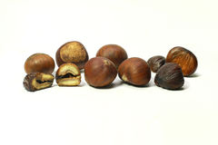 Fresh chestnuts  Royalty Free Stock Photo