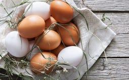 Fresh chicken brown eggs on rustic wood, organic farming concept Stock Photo