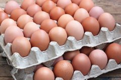 Fresh chicken brown eggs in a tray. Food. Royalty Free Stock Photos