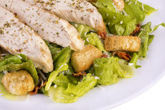 Fresh chicken caesar salad Royalty Free Stock Photography