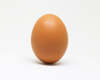 Fresh chicken egg on white background. isolated brown egg. Ingredients for cooking and baking Royalty Free Stock Images