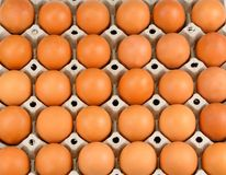 Fresh chicken eggs background. Top view. Natural healthy food an Royalty Free Stock Image
