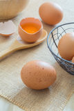 Fresh chicken eggs. On canvas background royalty free stock photos