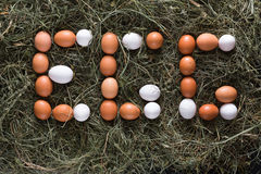 Fresh chicken eggs on hay, poultry farming background Stock Photo
