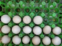 Fresh chicken eggs at Indian Street Market. Close-up of fresh chicken eggs for sale at Indian street market Royalty Free Stock Photos
