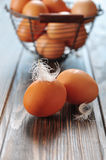 Fresh chicken eggs Royalty Free Stock Photography