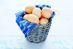 Fresh chicken eggs in an old bucket Stock Images