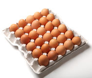 Fresh chicken eggs organic food Stock Photo