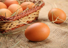 Fresh chicken eggs organic food Royalty Free Stock Photo