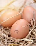 Fresh chicken eggs Royalty Free Stock Photos