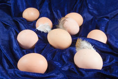 Fresh chicken eggs on velvet Royalty Free Stock Photography