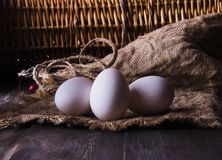 Fresh chicken eggs on a wooden shelf royalty free stock images