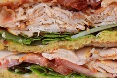 Fresh chicken meat sandwich Stock Image