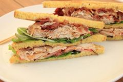 Fresh chicken meat sandwich Royalty Free Stock Photos