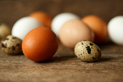 Fresh chicken and quail eggs on a wooden background Stock Image