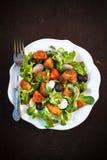 Fresh chicken salad Stock Image