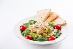 Fresh chicken salad. With rocket leaves and cherry tomatoes Stock Photos