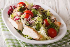 Fresh chicken salad, tomato, chicory, lettuce and arugula with b Stock Image