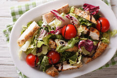 Fresh chicken salad, tomatoes and herbs with balsamic sauce clos Stock Photos