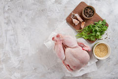 Fresh chicken with spices Stock Images