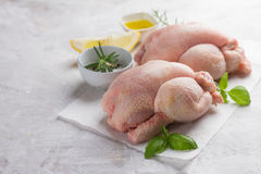 Fresh chicken with spices Stock Photo