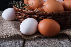 Fresh chicken white and brown eggs on sack closeup, organic farming background Royalty Free Stock Images