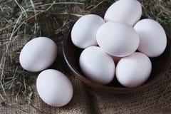 Fresh chicken white eggs on sack closeup, organic farming background Royalty Free Stock Photography