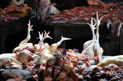 Fresh chickens in a meat market. Fresh chickens in an Asian meat market, Vietnam Stock Photo