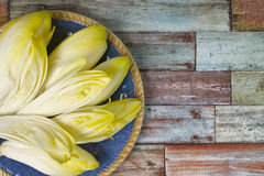 Fresh Chicory Salad leaves placed on a blue plate. On multicolored background copy space Royalty Free Stock Image