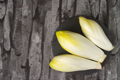 Fresh Chicory Salad leaves placed on a grey stone board. Copy space Royalty Free Stock Image