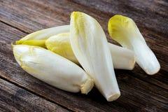 Fresh Chicory Salad Royalty Free Stock Photos