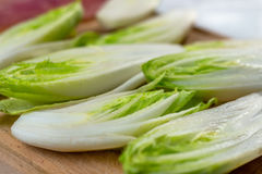 Fresh Chicory Salad Stock Images