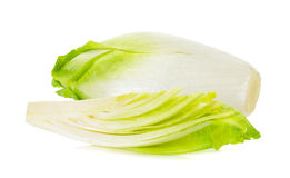 Fresh chicory on a white background Royalty Free Stock Images