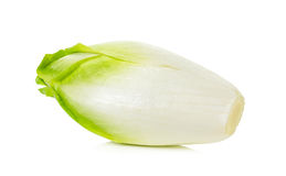 Fresh chicory on a white background Royalty Free Stock Photography
