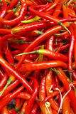 Fresh chili Stock Photo