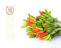 Fresh chili Stock Photos
