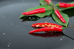 Fresh chili on green leaf and reflex Royalty Free Stock Photography