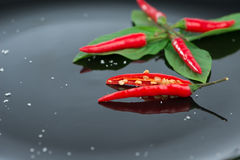 Fresh chili on green leaf and reflex Royalty Free Stock Image