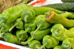 Fresh chili Royalty Free Stock Images