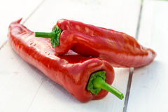Fresh chili pepper royalty free stock image