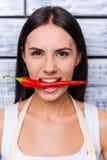 Fresh chili pepper. Royalty Free Stock Image