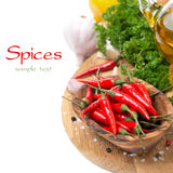 Fresh chili pepper garlic, spices and oil on a board Stock Images