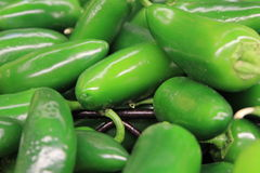 Fresh Chili Peppers Royalty Free Stock Photos