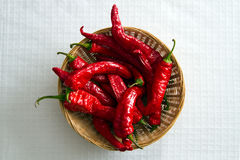 Fresh Chili Peppers Royalty Free Stock Photo