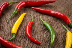 Fresh chili peppers - yellow, green and red chili pepper Royalty Free Stock Photos
